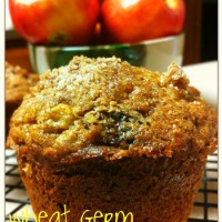 Low Fat Wheat Germ Apple Muffin