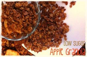 Reduced Sugar Apple Granola