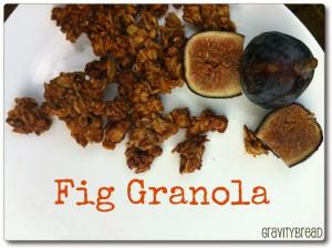 Fresh Fig Granola