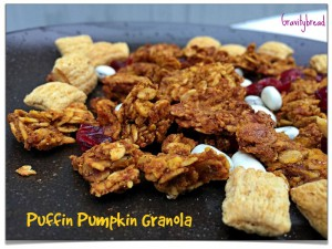 Healthy Puffin Pumpkin Granola