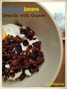 Blueberry Banana Granola with Quinoa Flakes