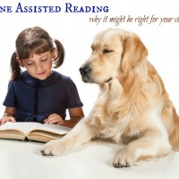 How Canine-Assisted Reading Can Help Your Child