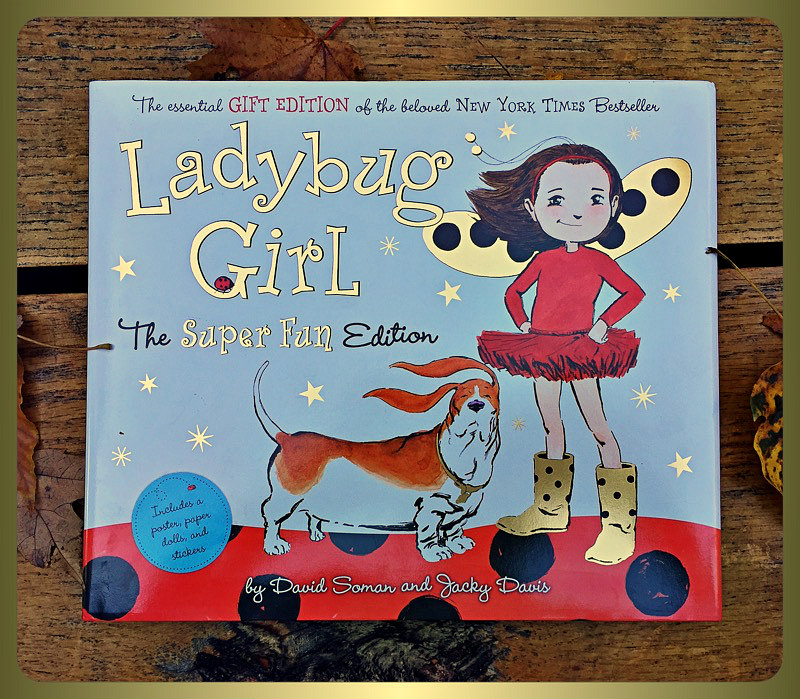 ladybug girl cover table