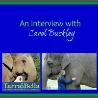 Gravitybread presents Carol Buckley
