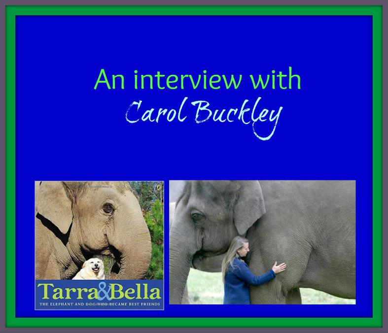 carol buckley interview